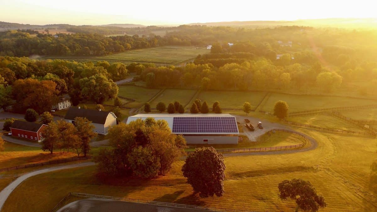 Panele fotowoltaiczne - farma